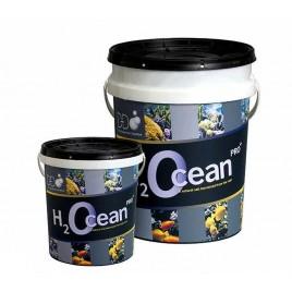 DD sel H2Ocean 6.6kg seau
