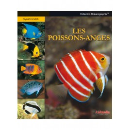 guide Zebraso'mag Les poissons-Anges en aquarium
