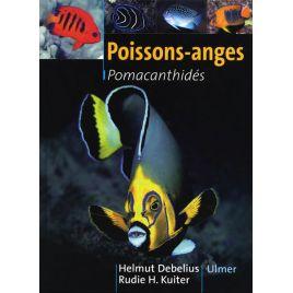 Poissons anges Ulmer
