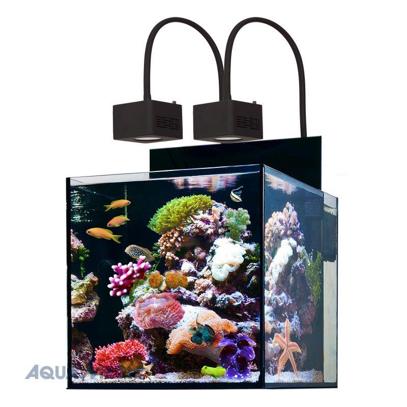Aqua medic aquarium cubicus 140 litres avec meuble for Terreau aquarium