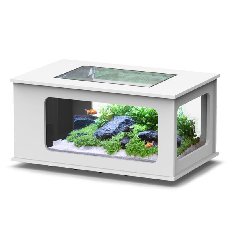 Aquatlantis Aquatable 100x63cm Poisson D Or Sa