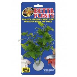 Zoomed betta plant philo