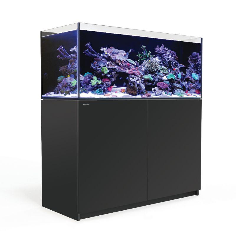 Red sea reefer 350 noir 345 litres poisson d 39 or sa - Aquarium 350 litres complet meuble et poissons ...