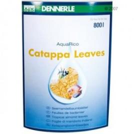 Dennerle feuilles de badamier (Cattapa Leaves)